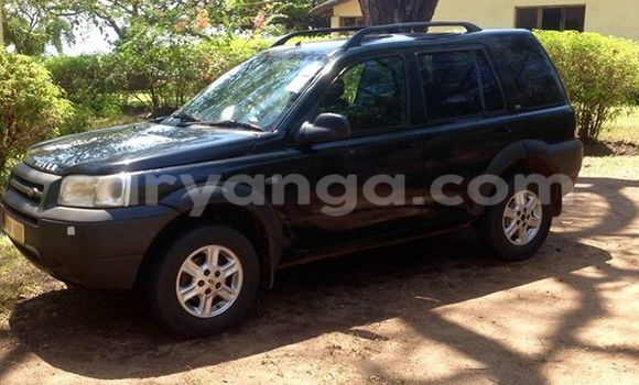 Buy Land Rover Freelander Black Car in Limbe in Malawi
