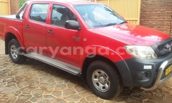 Buy Toyota Hilux Red Car in Blantyre in Malawi