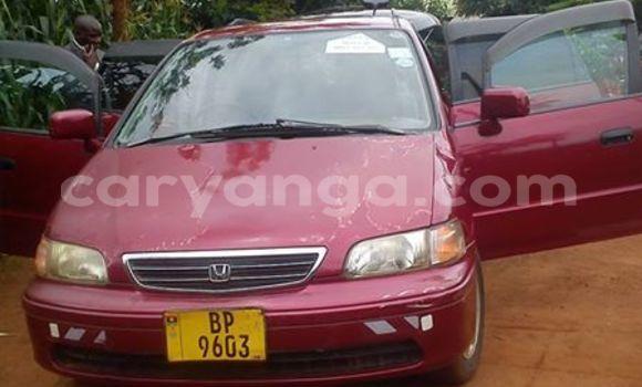Buy Honda Odyssey Red Car in Limbe in Malawi