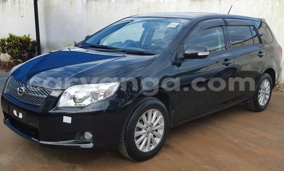 Buy Toyota Fielder Black Car in Blantyre in Malawi