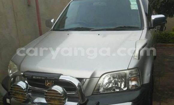 Buy Honda CR-V Silver Car in Limbe in Malawi