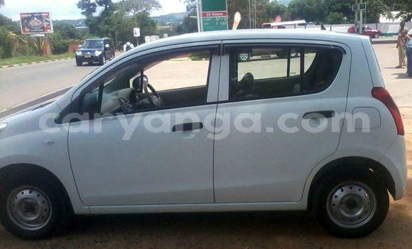 Buy Suzuki Alto Black Car in Blantyre in Malawi