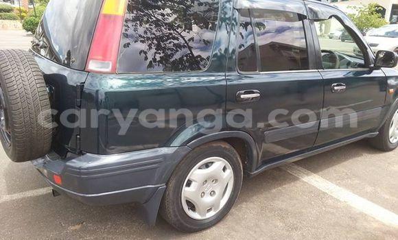 Buy Honda CR-V Other Car in Limbe in Malawi