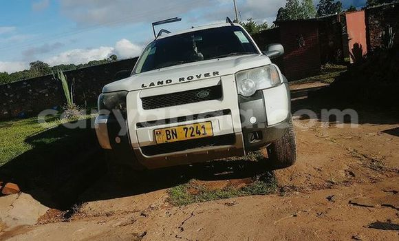 Buy Land Rover Freelander White Car in Limbe in Malawi