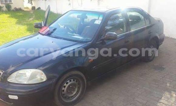 Buy Honda Accord Black Car in Blantyre in Malawi