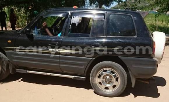 Buy Toyota RAV4 Black Car in Lilongwe in Malawi