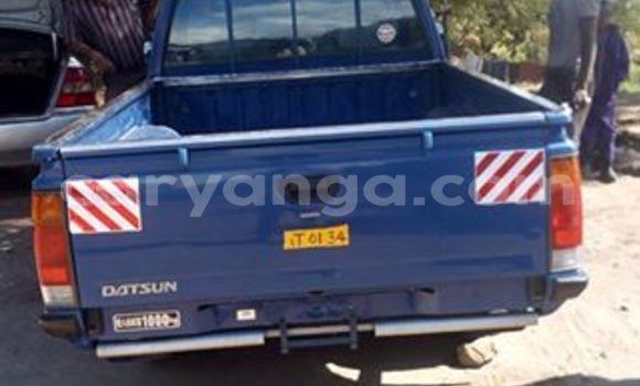 Buy Nissan Hardbody Blue Car in Limete in Malawi