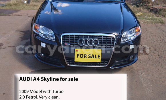 Buy Audi A4 Black Car in Lilongwe in Malawi