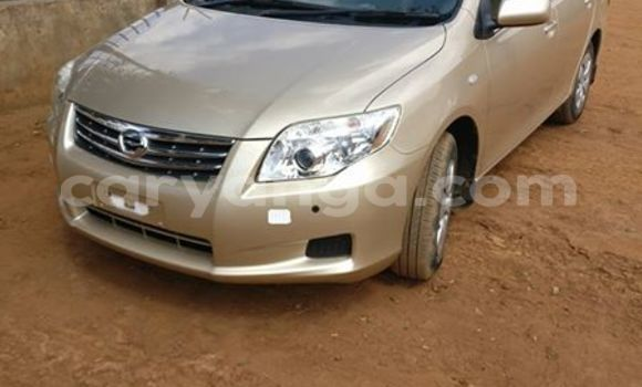 Buy Toyota Axio Other Car in Limete in Malawi