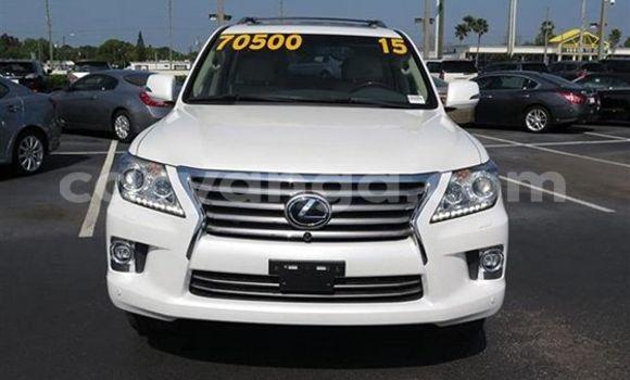 Buy Lexus LX White Car in Zomba in Malawi