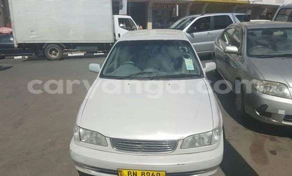 Buy Toyota Corolla White Car in Limete in Malawi