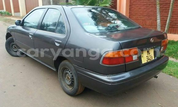 Buy Nissan Sunny Black Car in Limete in Malawi