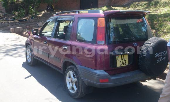 Buy Honda CR-V Black Car in Limbe in Malawi